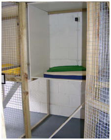 Cattery Cat Pen Internior